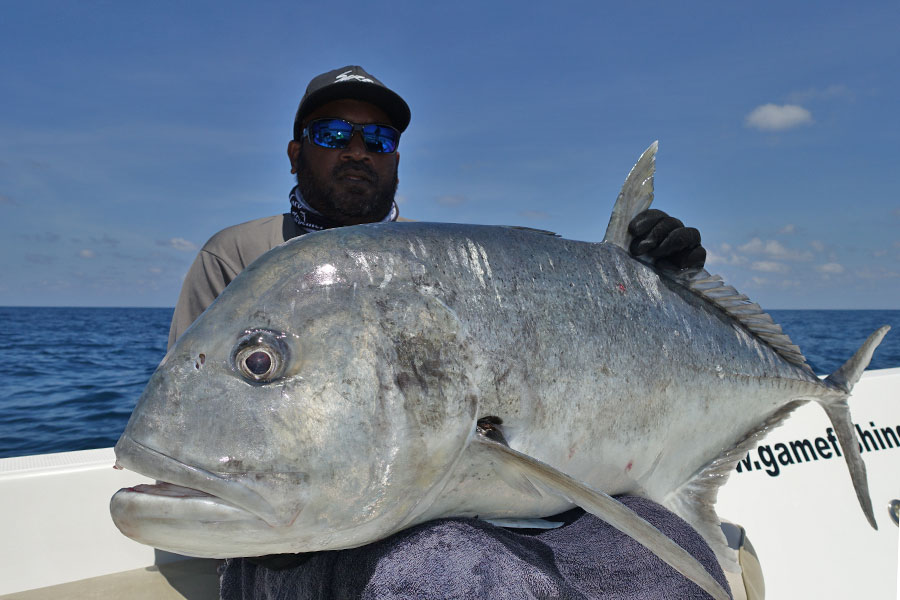 6_giant-trevally_popping_andamans_fishing_carpenter-rods_shimano-stella-reels_kokari-lures_koh-guan-chu