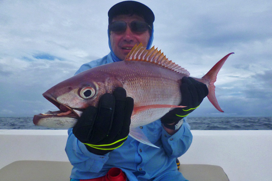 jean-micheal_rusty-jobfish_jigging_andamans_gamakatsu-rod_daiwa-saltiga-reel_sea-rock-jig