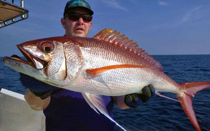 rusty-job-fish_jigging_andaman_jigging-master-fallings-special-rod_daiwa-dogfight-reel_dirk