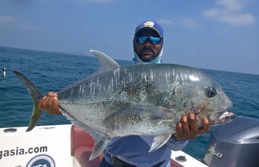 No8_Giant-trevally_fishing_popping_andaman_Shimano-Stella_gamefishingasia_boat_big-fish_gtpopping_boat-charter_angler_Suri
