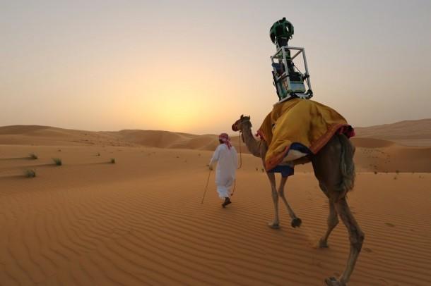 Camels Mapping Desert For Google in Liwa Desert, Abu Dhabi