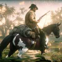How to Get a Perfect Pelts in Red Dead Redemption 2