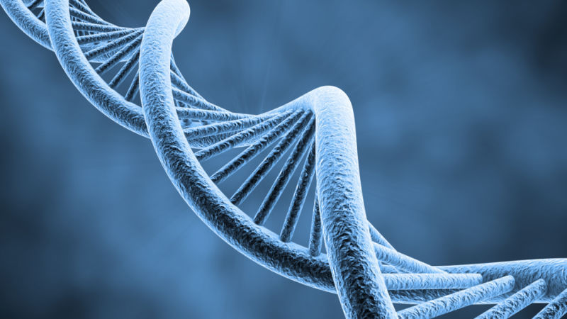 Image of DNA, the driving force of human existence
