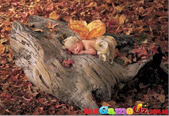 Puppies In Fall Wallpaper Woodland Fairy Educa Jigsaw Puzzle 500 Piece By Anne Geddes