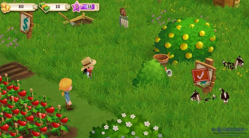 Facebook Play Farmville Game Zynga