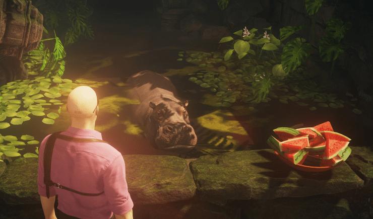 hitman 2 colombia hipopótamo
