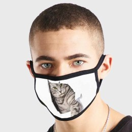 Animal Funny Cat Tear Out Non Medical 3 Ply Face Mask