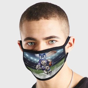 Indianapolis Colts NFL Non Medical 3 Ply Face Mask