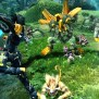3 New Mmorpgs We Are Anxiously Waiting To Play Gamers Decide