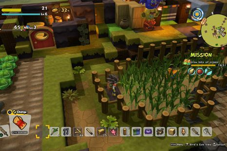 How To Grow Sugar Cane In Dragon Quest Builders 2