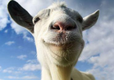 Goat-Simulator-xbox-one-gamersrd.com