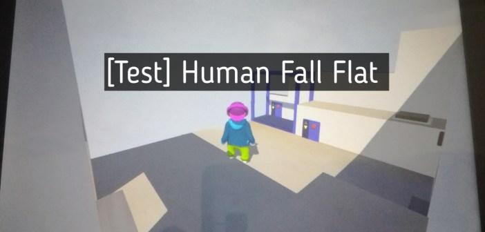 [Test] Human Fall Flat (Nintendo Switch)