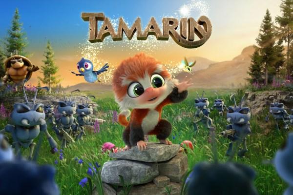 Tamarin, le petit singe qui s'est perdu en cours de route !!!