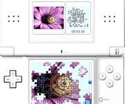 Puzzle Blumen5