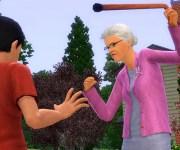 Die-Sims-3-Lebensfreude4