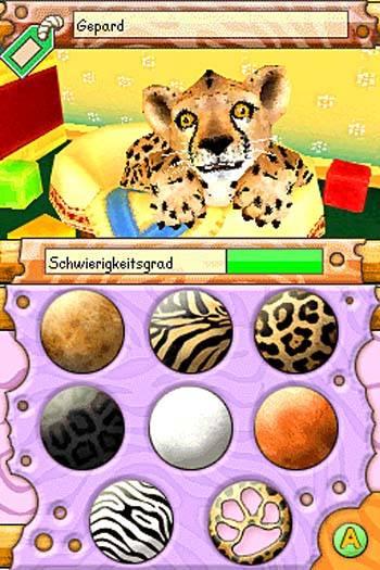 Baby Wildkatzen