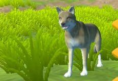 wyndbain wolf maker animal