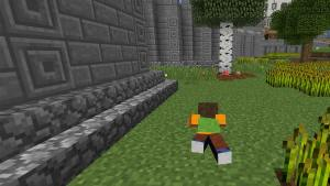 Crawl in Minecraft