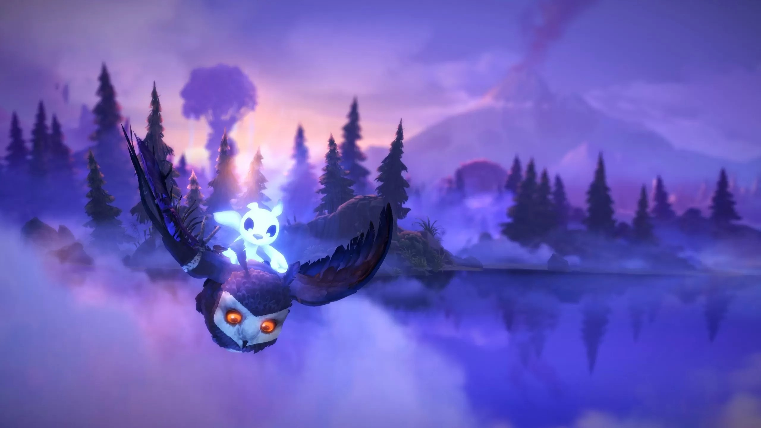 Amazing 2560X1440 Ori Wallpaper Download