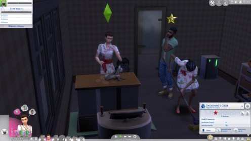 SIMS Chiens et Chats (1)