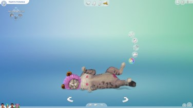 SIMS Chiens et Chats (2)