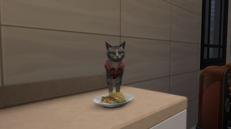 SIMS Chiens et Chats (3)