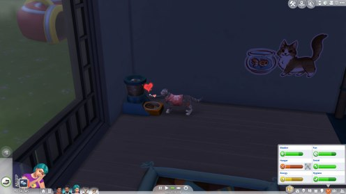 SIMS Chiens et Chats (6)