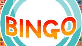 Bingo (3)