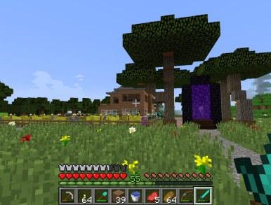 minecraft_tim_2