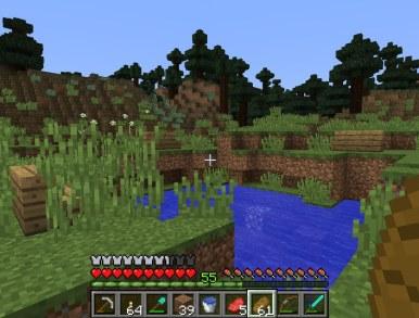 minecraft_tim_25