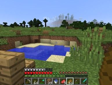 minecraft_tim_27