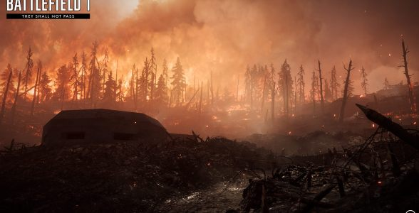 Auf Verdun Höhen findet ihr euch in den brennenden Wäldern von Verdun wieder.