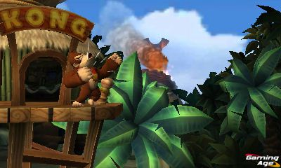 Donkey Kong Country Returns 3D_1