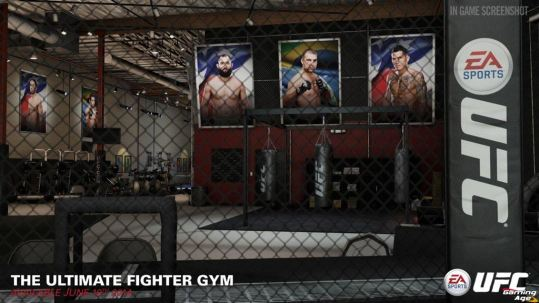 UFC the_ultimate_fighter_gym