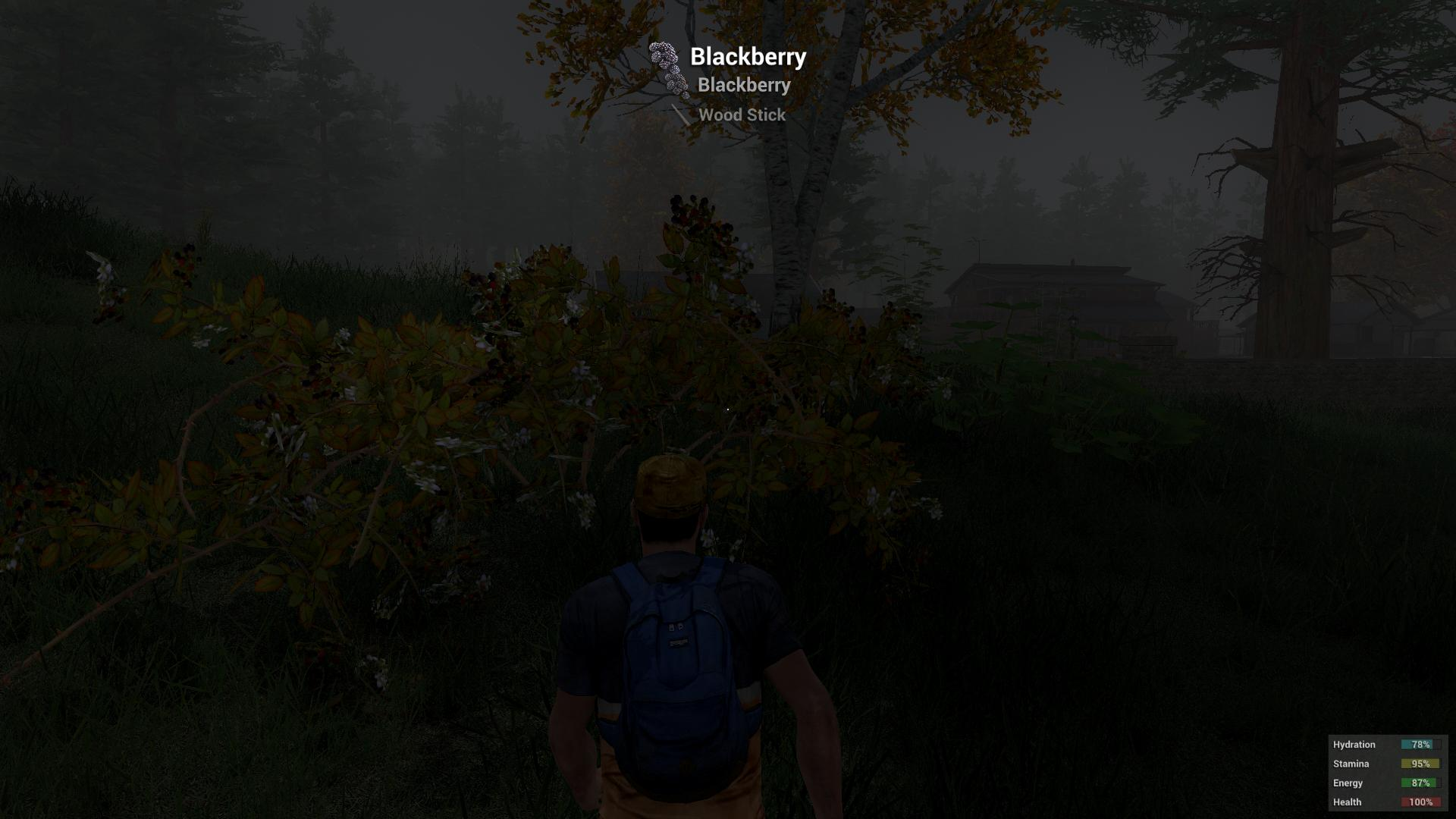 blackberry h1z1 h1z1 screenshot