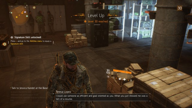 TheDivisionLevel30