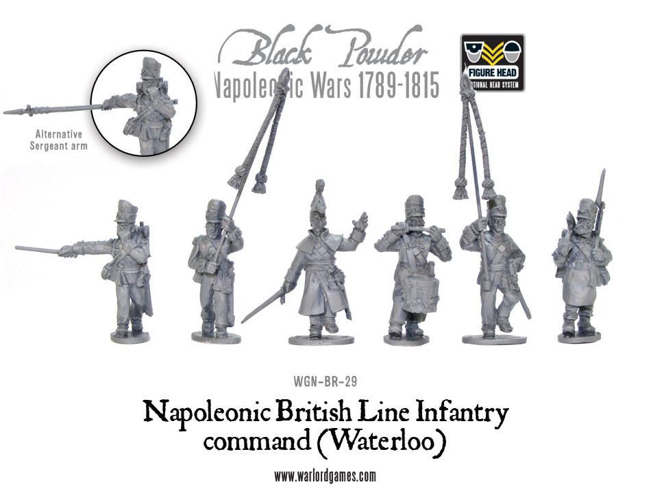 Napoleonic British Line Infantry command (Waterloo campaign)