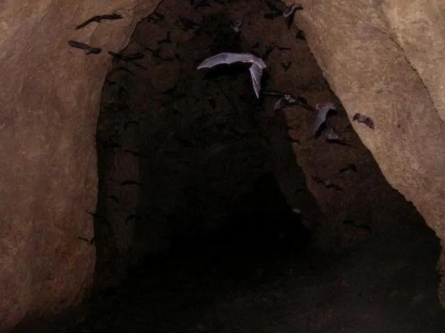 Baga Cave, things to do in Samal Island