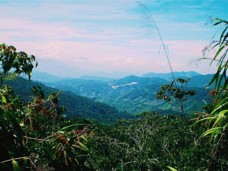 Budget Travel in Malaysia: How much do you need