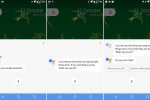 enable-google-assistant