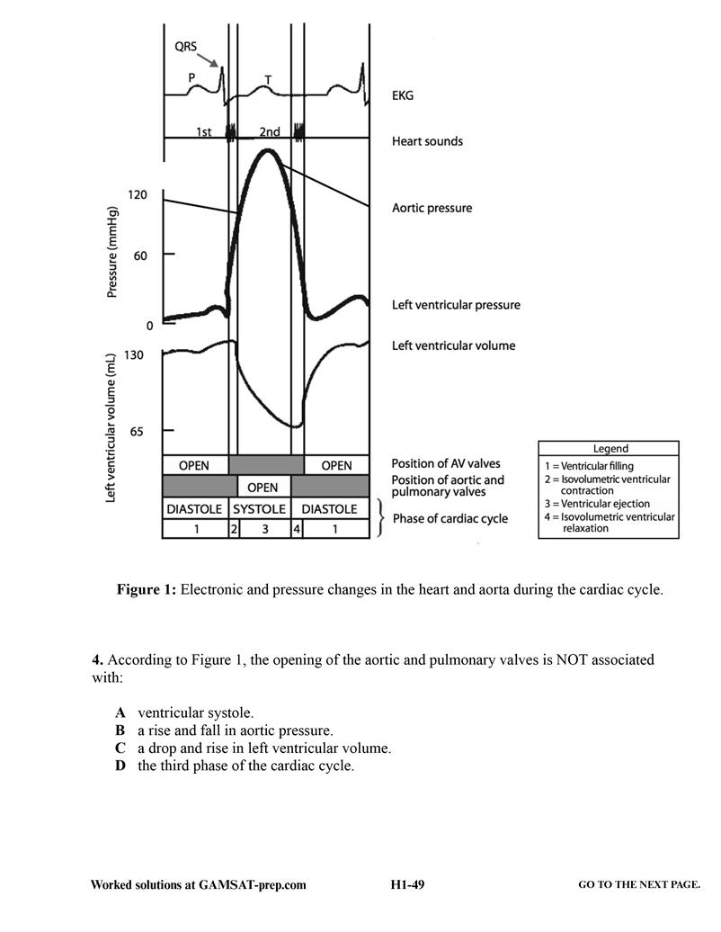 10 GAMSAT Practice Tests: Heaps of GAMSAT Sample Questions