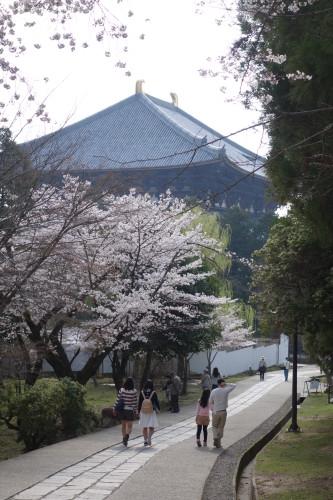 Nara, 1ere capitale, et son imposant temple Todaiji