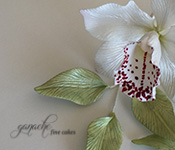 Handcrafted Sugar Flowers- Cymbidium Orchid
