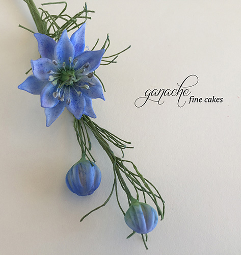 Handmade Sugar Flower- Love In A Mist