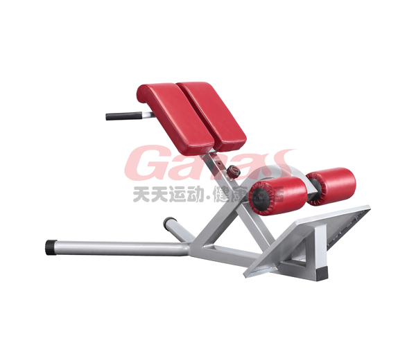 commercial gym roman chair grey covers ireland mt 6041 china equipment factory fitness