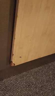 An example of typical damage to a plastic laminate wall panel. Impact at the edge/corner has caused the laminate to break.