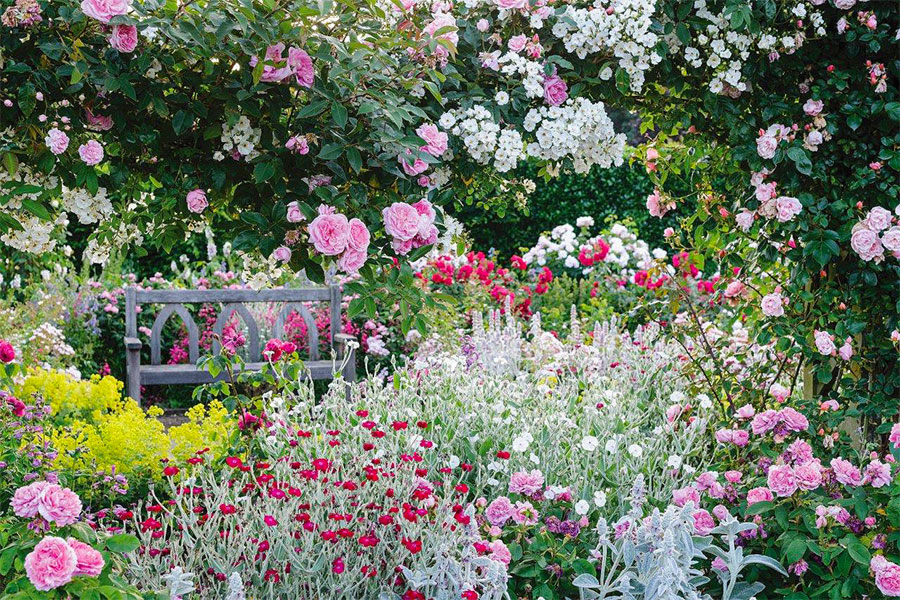 An image of a garden at Chelsea Flower Show - book a chauffeur to this event from GandT Executive