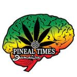 Pineal Times (Ocho Rios)