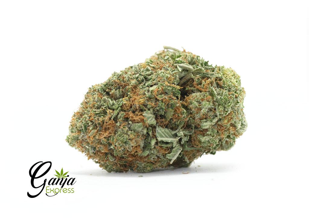 Buy White Poison Online Canada - Ganja Express