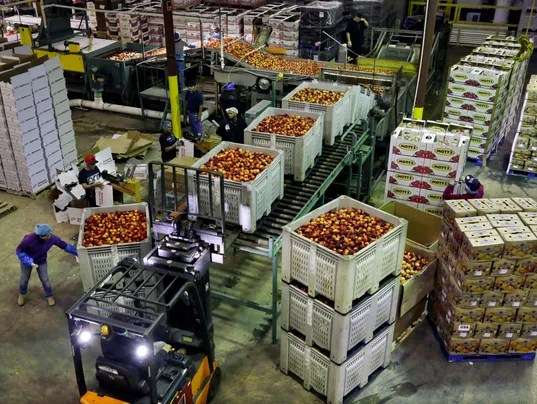 AP Wholesale Prices